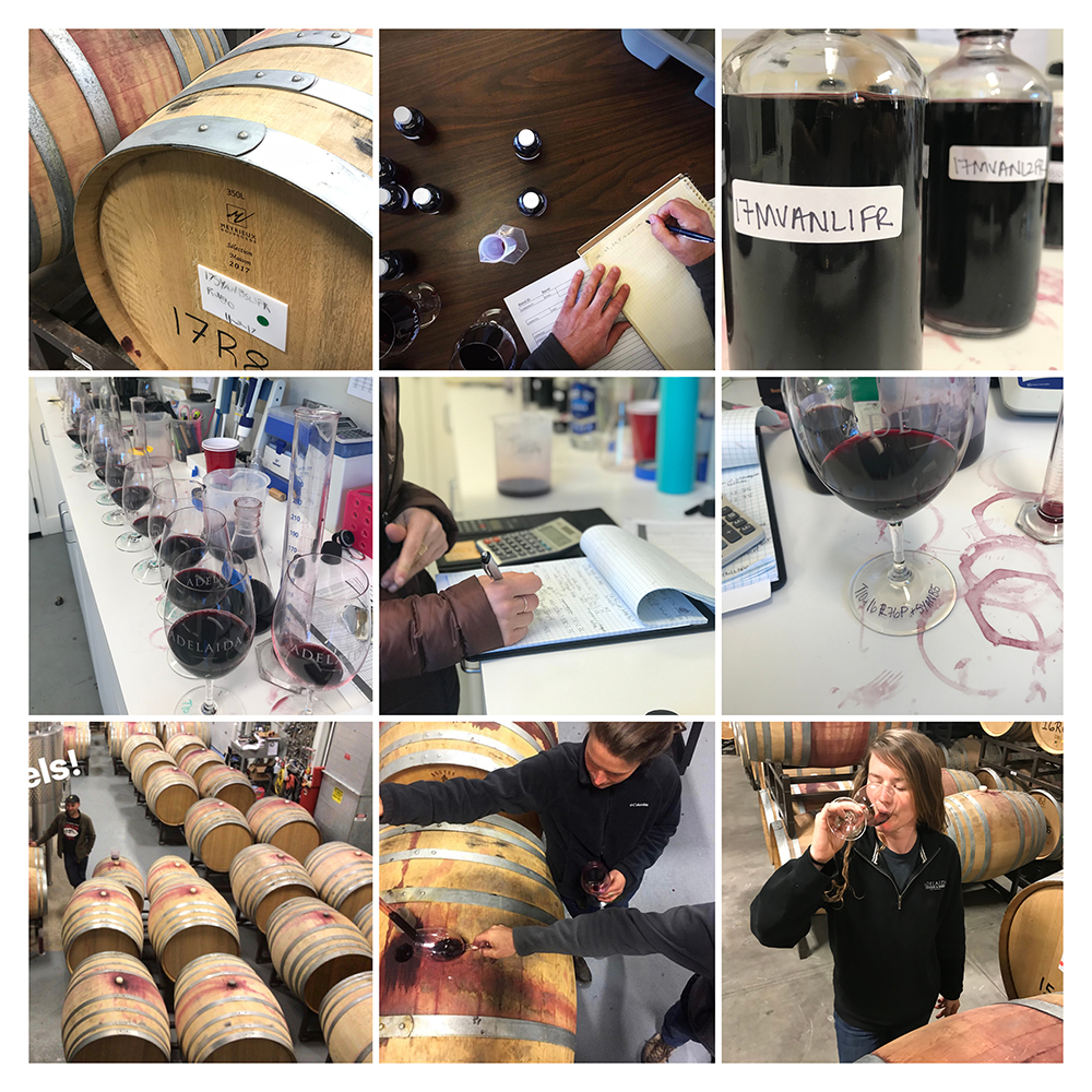 nine images: wine barrels; sample bottles with notes taken by winemaker; sample bottles of red wine; many glasses of wine in lab; winemaker taking notes on wine; glass of wine with writing on it; wine barrels in tank room; sampling wine barrels and putting wine in glass; winemaker tasting wine in barrel room
